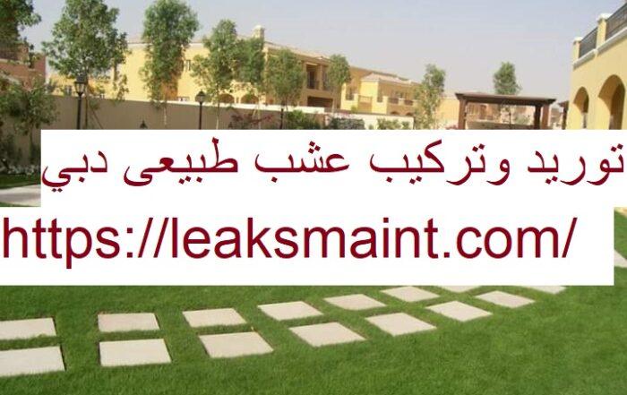 توريد وتركيب عشب طبيعى دبي
